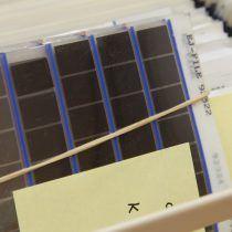 Microfiches BP Europoort